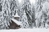 stock photo of chapels  - Wooden chapel in a snowy forest - JPG