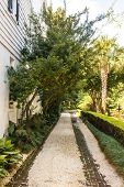 picture of crepe myrtle  - A gravel and brick driveway by a white house under crepe myrtles - JPG