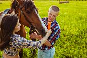 pic of feeding horse  - young adult couple standing and feeding horse on field - JPG