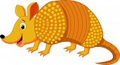 picture of armadillo  - Vector illustration of Cute armadillo cartoon isolated on white background - JPG