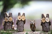 stock photo of screech-owl  - An Eastern Screech Owl hanging out with a few of his woodsey friends - JPG