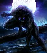 stock photo of wolf moon  - Angry werewolf illustration with night forest background - JPG