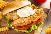 image of tartar  - Breaded Fish Sandwich with Tartar Sauce and Fries - JPG