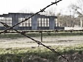 pic of ww2  - Remaining of barracks in a WW2 concentration camp Westerbork netherlands - JPG
