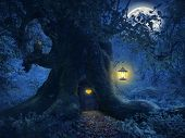 picture of starry night  - Magical night with a little home in the trunk of an ancient tree in the enchanted forest - JPG