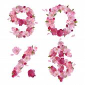 Spring Alphabet From Cherry Flowers Figures 9,0 And Signs.jpg