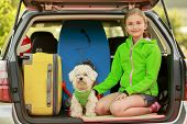 pic of dog clothes  -  Travel  - JPG