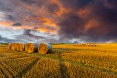 stock photo of harvest  - Field after harvest and dramatic sky during sunset - JPG