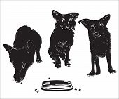 pic of character traits  - Silhouettes of three funny dogs near an empty bowl illustration over white - JPG