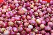 foto of red shallot  - Shallot red onion in the market for background   - JPG