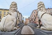image of lion  - Lions bridge in St - JPG