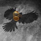 pic of caged  - Cage freedom concept as an open birdcage with a giant bird cast shadow flying above with open wings as a symbol of liberty and justice - JPG