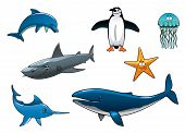 stock photo of aquatic animal  - Marine wildlife colored animal characters in vector depicting a dolphin - JPG