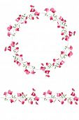 foto of sweet pea  - Detailed contour wreath and seamless pattern brush with sweet peas isolated on white - JPG