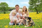 stock photo of baby dog  - A portrait of a happy family of five caucasian people including big brother toddler boy and baby sister are relaxing in a yellow Dandelion flower meadow with their pet dog - JPG