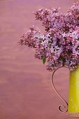foto of pitcher  - Fresh lilac flowers in the metal yellow pitcher against pink background - JPG