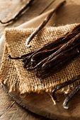 image of bean-pod  - Raw Organic Vanilla Beans Ready to Cut - JPG