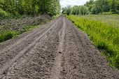 picture of bundle  - Dirt road through a small nature area with loose sand on a beautiful day in the spring season - JPG