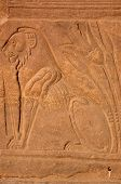 image of isis  - A seated lion with the sacred lotus blossom - JPG