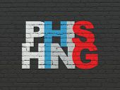 Security Concept: Painted Multicolor Text Phishing On Black Brick Wall Background poster