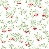 Rowan Berry Seamless Pattern In Flat Simple Style. Doodle Floral Botany Background With Branches And poster