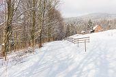 Winter Park. Beautiful Winter Scenery. poster