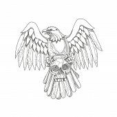 Doodle Art Illustration Of An American Bald Eagle Clutching A Skull With Wings Spread Out Viewed Fro poster