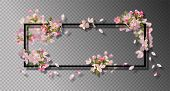 Abstract Frame With Spring Flowers. Vector Background With Spring Cherry Blossom, Falling Petals And poster