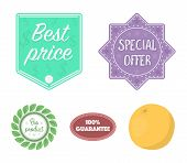 Special Offer, Best Prise, Guarantee, Bio Product.label, Set Collection Icons In Cartoon Style Vecto poster