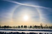 Halo Around Sun On Blue Sky In Winter Time And Trees poster