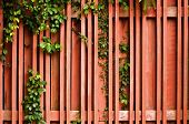 Brown Wood Fence With Green Creeper Plant poster
