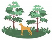 Green Forest With Trees And Bushes And Hunting Dog Pointer Isolated Cartoon Animal. Vector Pet And G poster