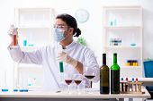 Male chemist examining wine samples at lab poster