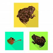 Isolated Object Of Wildlife And Bog Symbol. Set Of Wildlife And Reptile Vector Icon For Stock. poster