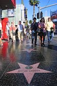 LOS ANGELES - OCTOBER 16: Hollywood Walk of Fame in Hollywood Boulevard on October 16, 2011 in Los A