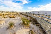 Hiking In The Desert. Boardwalk Hiking Trail Through The White Sands National Monument In New Mexico poster