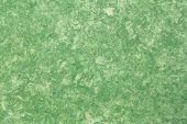background of green amate bark paper handmade created in Mexico from Amate, Nettle, and Mulberry tre poster