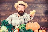 Community Gardens And Farms. Healthy Lifestyle. Homegrown Organic Food. Man With Beard Wooden Backgr poster