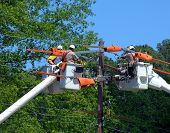 stock photo of utility pole  - Three buckets trucks lift linemen to top of electricity pole - JPG