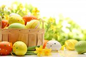 stock photo of daffodils  - Easter decoration with eggs - JPG
