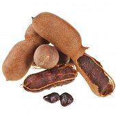 stock photo of bean-pod  - Ripe tamarind fruit  - JPG