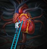 stock photo of cardiovascular  - Heart doctor therapy health care and medical concept with a surgeon or cardiologist climbing a ladder to monitor and inspect the human cardiovascular anatomy for a hospital diagnosis treatment - JPG