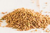 foto of fenugreek  - The spice fenugreek which is used a lot in Indian cooking - JPG