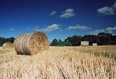 Hay Bales In Summer poster