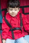 picture of seatbelt  - A little boy in a red jacket wearing seatbelts - JPG