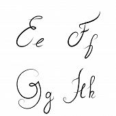 Hand Drawn Calligraphic Letters E,f,g,h Isolated