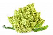 pic of romanesco  - Picture of romanesco broccoli on white background - JPG