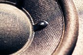 pic of subwoofer  - A Close up of an Audio Woofer