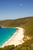 picture of glider  - A hang glider flies over Shelley Beach in West Cape Howe National Park near the towns of Albany and Denmark in Western Australia - JPG