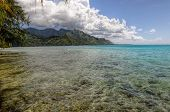 Clear Waters In Moorea.french Polynesia